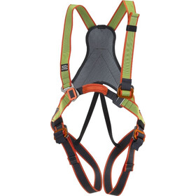 Climbing Technology Jungle Lichaamsharnas Kinderen, green/grey
